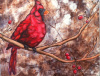 """A Red Cardinal in the Snow"" by Carrie Chavers"